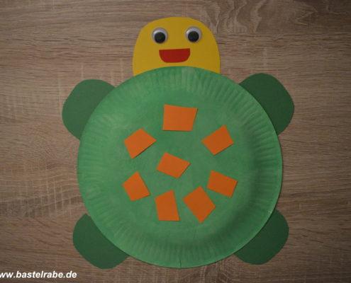 Schildkröte basteln